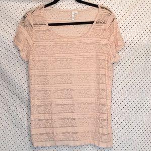 Elle Floral Lace Striped Short Sleeve Sheer Blouse